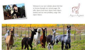 Akelei Alpakas - German Alpaka Breeders in Cape Town, Aouth Africa